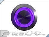 "UV Illuminated Vandal Resistant ""Momentary"" Switch - 22mm - Silver Housing - Ring Illumination"
