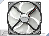 Noiseblocker NB-eLoop B12-1 120mm x 25mm Ultra Silent Bionic Blade Fan - 800 RPM - below 8 dBA <b><font color=red> Hot Item!!</font></b>