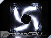 BitFenix Spectre LED 120mm PWM Fan - White (BFF-BLF-P12025W-RP)