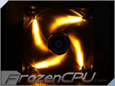 BitFenix Spectre LED 120mm PWM Fan - Orange (BFF-BLF-P12025O-RP)