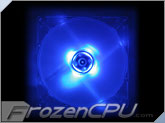 SilenX 80x80x25mm - 15dBA - 32CFM Effizio Series LED Fan - Blue (EFX-08-15B)