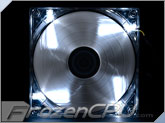 Aerocool Shark White Edition 120mm x 25mm High Air Pressure Fan w/ White LEDs