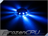 FrozenCPU RingPuk 10 LED Lighting Module - Blue