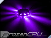 FrozenCPU RingPuk 10 LED Lighting Module - UV